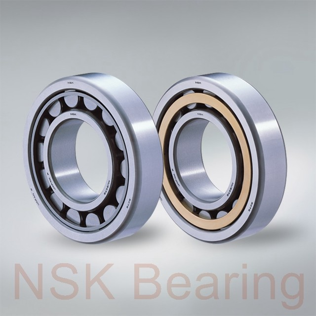 NSK NJ 264 cylindrical roller bearings