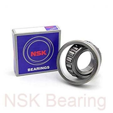NSK 100BER29XV1V angular contact ball bearings